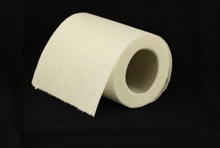 Flushing toilet paper in Singapore